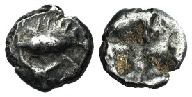 Mysia, Kyzikos, c. 600-550 BC. AR Hemiobol (7mm, 0.47g). Tunny l.; fish tail(?) below. R/ Quadripartite incuse square. Von Fritze -; SNG BnF -; Klein ...