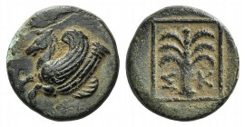 Troas, Skepsis, c. 400-310 BC. Æ (15mm, 3.43g, 6h). Forepart of Pegasos l. R/ Fir tree. SNG Copenhagen 475. Green patina, VF