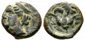 Cyprus, Paphos, Timocharis, c. 385 BC, Æ, 3.77g, 14mm. Head of Aphrodite left / Rose. Tziambazis 92, p.27; BMC 49. Very Fine and rare