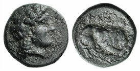 Mysia, Plakia, 4th century BC. Æ (11mm, 1.68g, 1h). Turreted head of Kybele r. R/ Lion standing r., devouring prey, on grain ear. SNG BnF 2378–82. Gre...