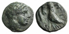 Mysia, Priapos. 1st century BC. Æ (10mm, 1.41g, 7h). Laureate head of Apollo r. R/ Crayfish r.; symbol below. SNG BnF 2403-4. Green patina, near VF