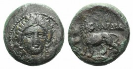 Thrace, Kardia, c. 350-309 BC. Æ (19mm, 6.53g, 5h). Wreathed head of Persephone facing slightly r. R/ Lion standing l., head r., on barley grain; star...