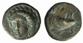 Aeolis, Gyrneion, 4th century BC. Æ (10mm, 1.32g, 9h). Laureate head of Apollo facing slightly l. R/ Mussel shell. SNG von Aulock 7689. Green patina, ...