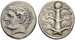 CYRENAICA. Cyrene. Didrachm 300/298. Obv. Head of young Apollo Carneios with ram's horn to l. Rev. KY - PA Silphium plant. Monogram on l. and r. 7.53 ...
