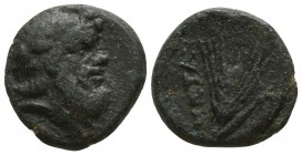Lucania. Metapontion circa 350-250 BC. Bronze Æ