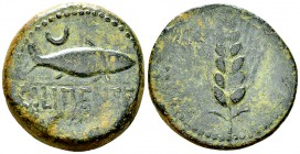 Ilipense AE32, c. 150-100 BC 