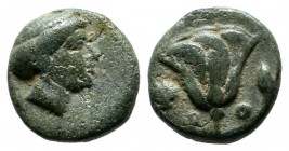 Caria, Rhodes. ca.404-385 BC. Æ (10mm, 1.23g). Head of nymph of Rhodes right. / P - O. Rose with buds to left and right. BMC 327-33; HGC 6, 1476.