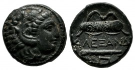 Kings Of Macedon, Alexander III 'the Great'. Circa 336-323 BC. AE (17mm, 5.00g). Uncertain Macedonian mint, lifetime issue. Head of Herakles right, we...