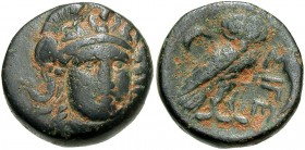Troas, Sigeion, 355 - 334 BC, AE16, Athena and Owl