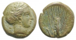Southern Lucania, Metapontion, c. 300-250 BC. Æ (15mm, 4.36g, 5h). Wreathed head of Demeter r., wearing earring and necklace. R/ Grain ear with leaf t...