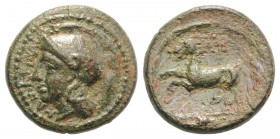 Sicily, Kamarina, c. 339-317 BC. Æ (15mm, 3.57g, 7h). Helmeted head of Athena l. R/ Horse prancing l.; grain ear in exergue. CNS III, 42; HGC 2, 555. ...