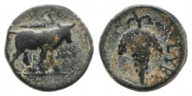 Euboea, Euboian League, c. 272-267 BC. Æ (11mm, 2.01g, 12h). Bull standing r.; club above. R/ Grape bunch on vine. BCD Euboia 69. Green patina, about ...