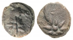 Pontos, Uncertain, c. 130-100 BC. Æ (10.5mm, 2.09g, 9h). Head of horse r., with star of eight points on its neck. R/ Comet star of eight points with t...