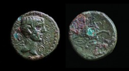 MYSIA, Kyzikos: Uncertain emperor (Augustus, Caligula, or Claudius), 1st century CE. 2.48g, 15mm.