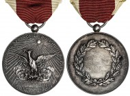 FRANCE: Third Republic, AR medal, 42mm, silver medal by Henri Dubois, COMPAGNIE FRANÇAISE DU PHÉNIX around phoenix rising from flames beneath blazing ...
