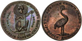 GREAT BRITAIN: AE halfpenny token (9.72g), 1801, D&H-458, Atkins-340, Pidcock's Exhibition, Middlesex, wanderow // crane, cleaned long ago, mostly ret...