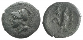 Northern Campania, Suessa Aurunca, c. 265-240 BC. Æ (20mm, 4.59g, 7h). Helmeted head of Minerva l. R/ Cock standing r.; star to upper l. Sambon 873; H...