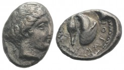 Campania, Cumae, c. 420-385 BC. AR Didrachm (20.5mm, 6.82g, 6h). Female head r. R/ Large mussel shell; grain kernel above. Cf. Rutter 147; HNItaly 532...