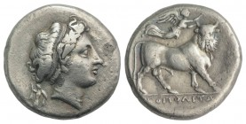 Southern Campania, Neapolis, c. 300-275 BC. AR Didrachm (20mm, 6.08g, 6h). Head of nymph r.; behind, Athena standing right, holding spear and shield. ...