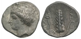 Southern Lucania, Metapontion, c. 340-330 BC. AR Stater (23mm, 7.15g, 6h). Wreathed head of Demeter l. R/ Barley ear with leaf to r.; to l., kerykeion...