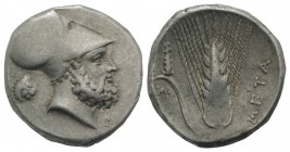 Southern Lucania, Metapontion, c. 340-330 BC. AR Stater (21mm, 7.91g, 6h). Helmeted head of Leukippos r.; to l., lion head r. R/ Barley ear with leaf ...