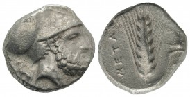 Southern Lucania, Metapontion, c. 340-330 BC. AR Stater (19mm, 7.57g, 9h). Ami-, magistrate. Helmeted head of Leukippos r.; to l., dog seated l. R/ Ba...