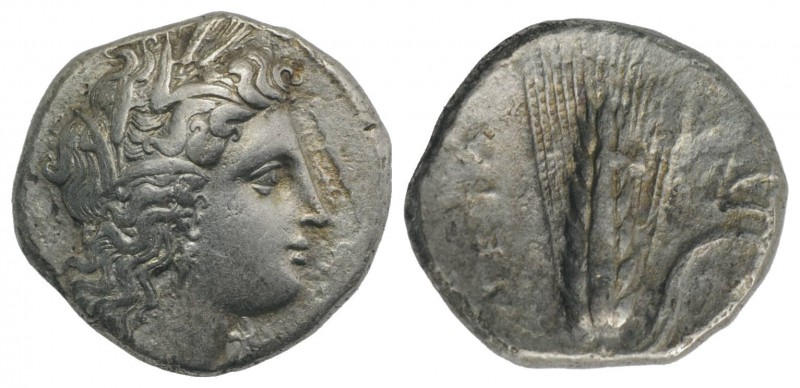 Southern Lucania, Metapontion, c. 325-275 BC. AR Stater (22mm, 7.38g, 6h). Head ...
