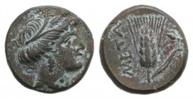 Southern Lucania, Metapontion, c. 300-250 BC. Æ (13mm, 2.51g, 9h). Wreathed head of Demeter r. R/ Grain ear with stem to r.; fly to r. Johnston Bronze...