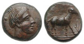 Sicily, Nakona, c. late 5th century BC. Æ (11mm, 2.15g, 3h). Female head r. R/ Ram standing r.; barley-corn to r. CNS I, 6; HGC 2, 963. Rare, tooled a...