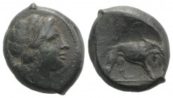 Anonymous, Southern Italy, c. 260 BC. Æ (22mm, 9.29g, 7h). Female head r., with ribbon in hair. R/ Lion r.; [ROMANO] in exergue. Crawford 16/1a; HNIta...