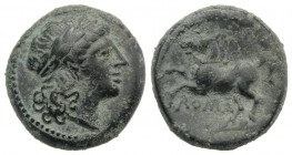 Anonymous, Rome, c. 235 BC. Æ (15mm, 3.39g, 6h). Laureate head of Apollo r. R/ Bridled horse prancing l. Crawford 26/3; RBW 50; HNItaly 308. Green pat...