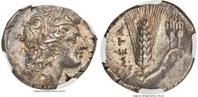 LUCANIA. Metapontum. Ca. 330-280 BC. AR nomos or stater (21mm, 7.87 gm, 2h). NGC MS 4/5 - 5/5. Head of Demeter right wearing grain wreath, triple-drop...