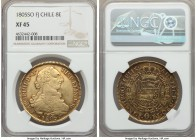 Charles IV gold 8 Escudos 1805 So-FJ XF45 NGC, Santiago mint, KM54. Well-toned throughout with a considerable rosaceous element to the typical periphe...