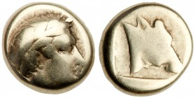 Lesbos, Mytilene. Electrum Hekte (2.42 g), ca. 454-428/7 BC. Laureate head of Apollo right. Reverse: Head of calf right within incuse square. Bodenste...