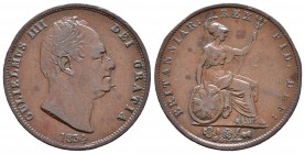 Gran Bretaña. William IV. 1/2 penny. 1834. (Km-706). Ae. 9,46 g. MBC. Est...45,00.
