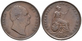 Gran Bretaña. William IV. 1 penny. 1831. (Km-707). Ae. 18,73 g. Sin WW en cuello. MBC-. Est...60,00.