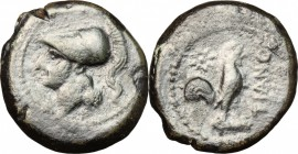 Greek Italy. Samnium, Southern Latium and Northern Campania, Teanum Sidicinum. AE, 265-240 BC. D/ Head of Athena left, helmeted. R/ Rooster standing r...