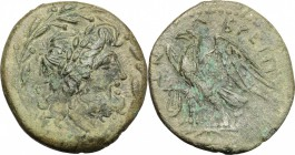 Greek Italy. Bruttium, The Brettii. AE unit , 218-205 BC. D/ Head of Zeus right, laureate; within wreath. R/ Eagle standing left on thunderbolt; befor...