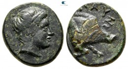 Kings of Macedon. Pausanias 395-393 BC. Bronze Æ