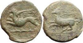 Sicily. Kainon. AE, 22 mm, ca. 365 BC. D/ Griffin springing left; below, exergual line. R/ Horse prancing left, trailing rein. CNS I, 1; SNG ANS 1173....