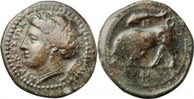 Sicily. Syracuse. Agathokles (317-289 BC). AE 17 mm, 317-289 BC. D/ Head of Persephone left; wearing wreath. R/ Bull charging left; above, dolphin, in...