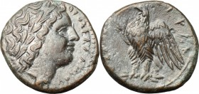 Sicily. Syracuse. AE 23 mm, 290-280 BC. D/ Laureate head of young Zeus Hellanios right. R/ Eagle standing left on thunderbolt. CNS II 167. SNG München...