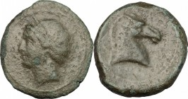 Punic Sardinia. Punic Sardinia. AE 25mm, 264-241 BC. D/ Head of Kore left, wearing wreath. R/ Head of horse right. SNG Cop. 192. AE. g. 10.96 mm. 25.0...