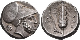 LUCANIA. Metapontum. Circa 340-330 BC. Didrachm or nomos (Silver, 20 mm, 7.94 g, 9 h). Bearded head of Leukippos to right, wearing Corinthian helmet; ...