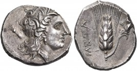 LUCANIA. Metapontum. Circa 290-280 BC. Didrachm or nomos (Silver, 19 mm, 7.96 g, 9 h). Head of Demeter to right, wearing grain wreath, triple pendant ...