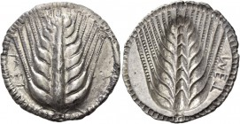 Metapontum. Nomos circa 540-510, AR 8.06 g. MET Barley ear. Rev. MET retrograde and in relief, the same type incuse. Noe-Johnston 4. McClean 896. Hist...