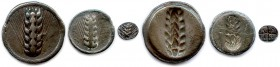 LUCANIA - METAPONTUM 550-470 B.C Three coins in silver