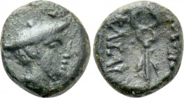 KINGS OF THRACE (Celtic). Kingdom of Tylis. Kavaros (Circa 260 or 240/30-218/13 BC). Ae. Uncertain mint in central Thrace.