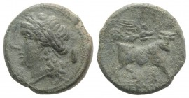 Samnium, Aesernia, c. 263-240 BC. Æ (20mm, 5.97g, 12h). Laureate head of Apollo l.; shield behind. R/ Man-headed bull walking r.; Victory flying above...
