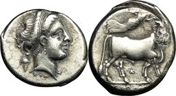 Greek Italy. Central and Southern Campania, Neapolis. AR Didrachm, 320-300 BC. D/ Diademed head of nymph right; behind, grape bunch; below, ΣTA; befor...